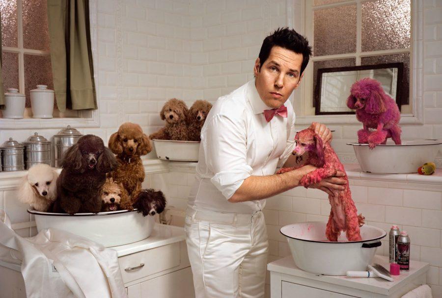 мужчина стирает