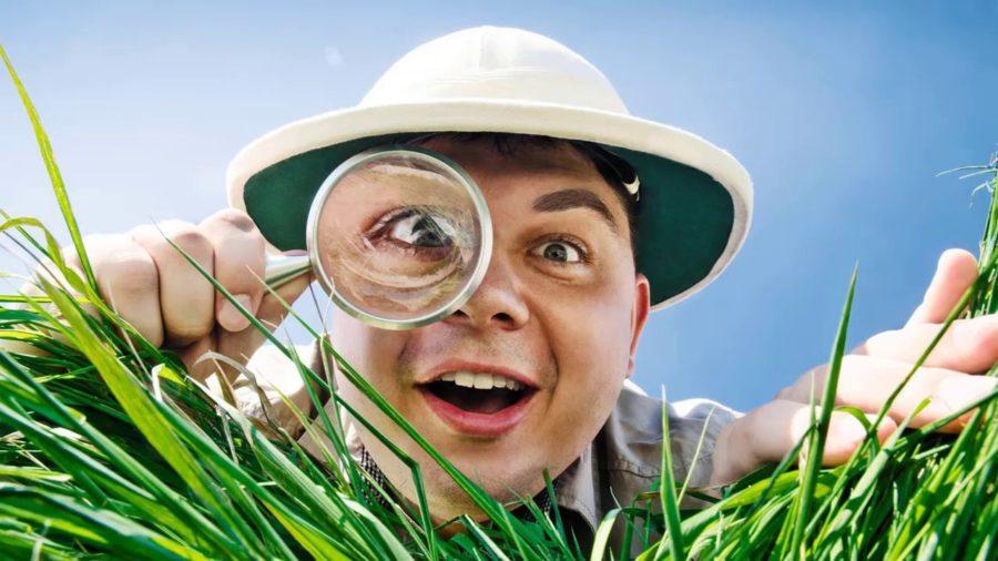 повысить потенцию травами