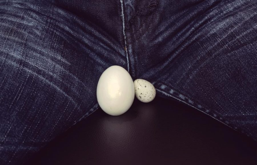 ласки яичек