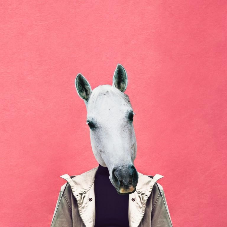 мужчина с головой коня