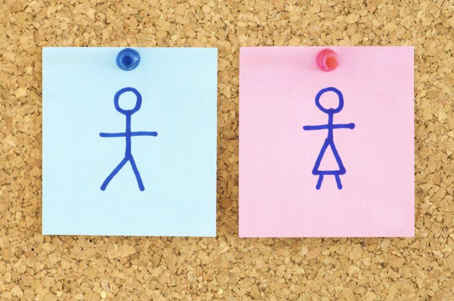равноправие полов - что это