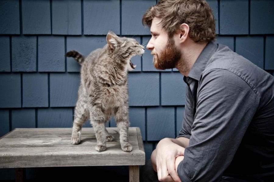 парень и кот