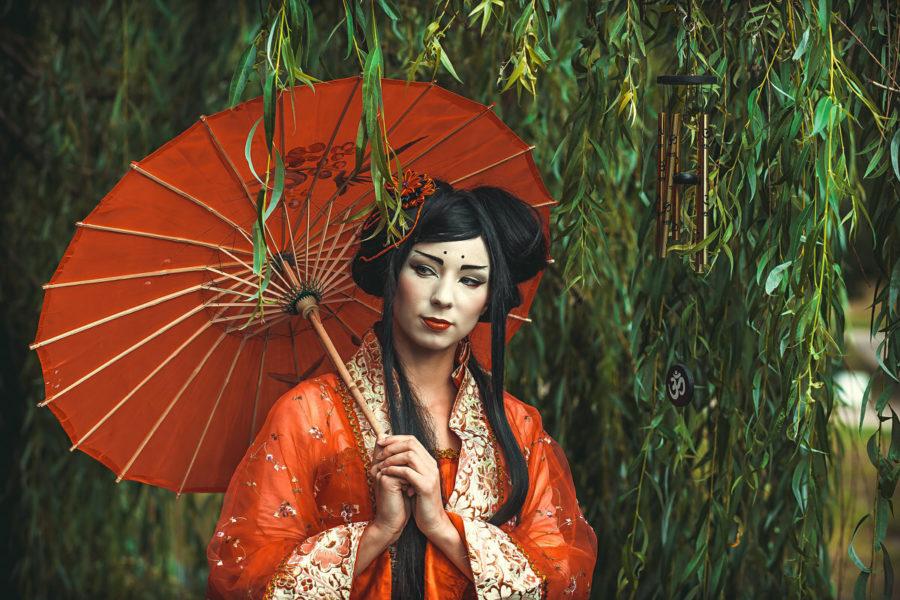 Школы гейши