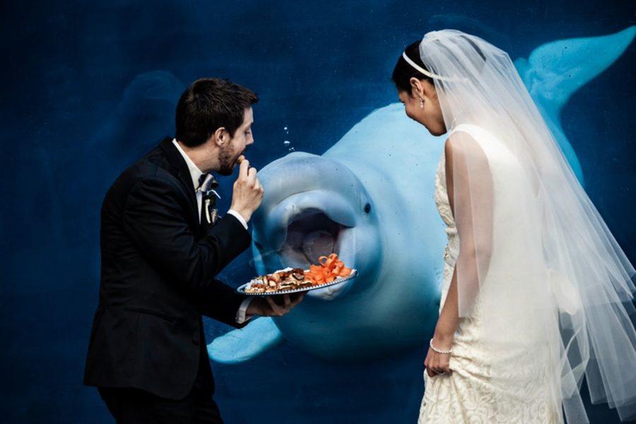 разнополый брак