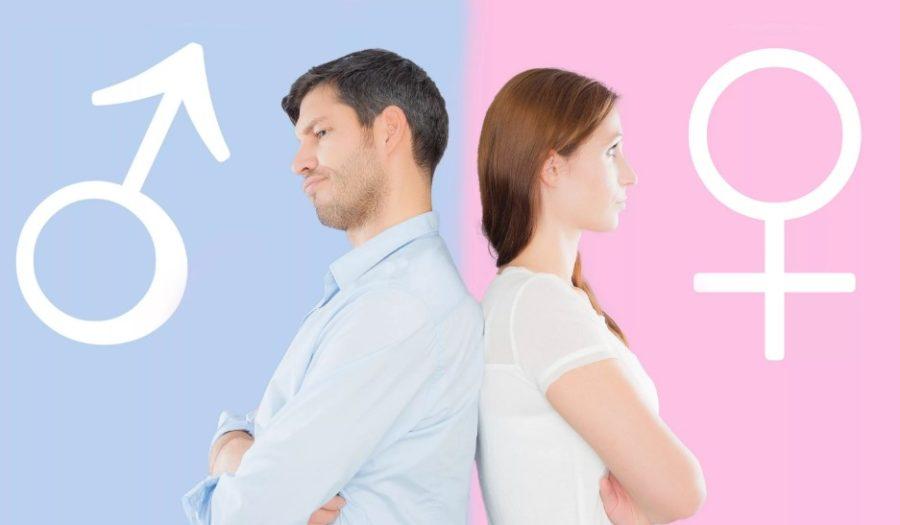 Отличия мужчины от женщины