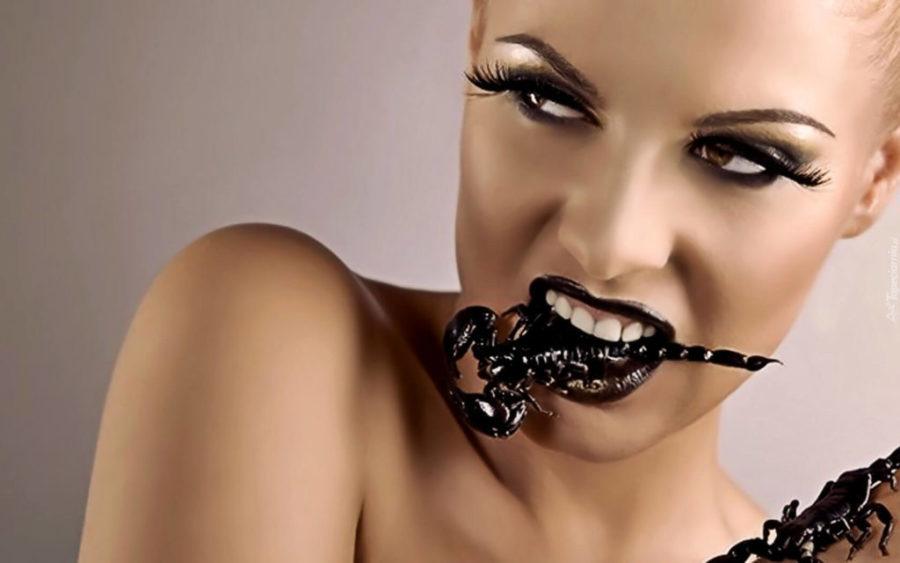 сексуальные скорпионы