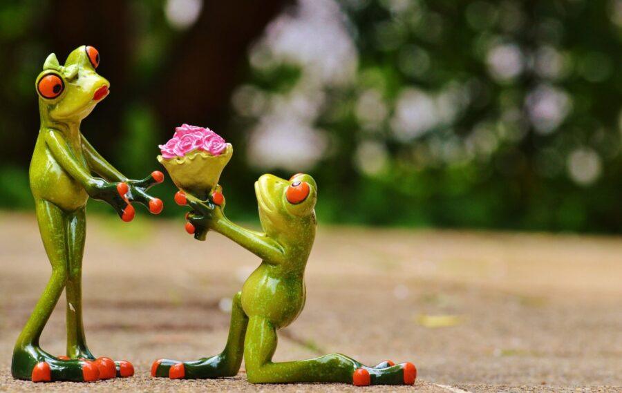 две статуэтки лягушек с цветами
