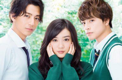 Японские эротические мелодрамы – 30 фильмов из страны восходящего солнца