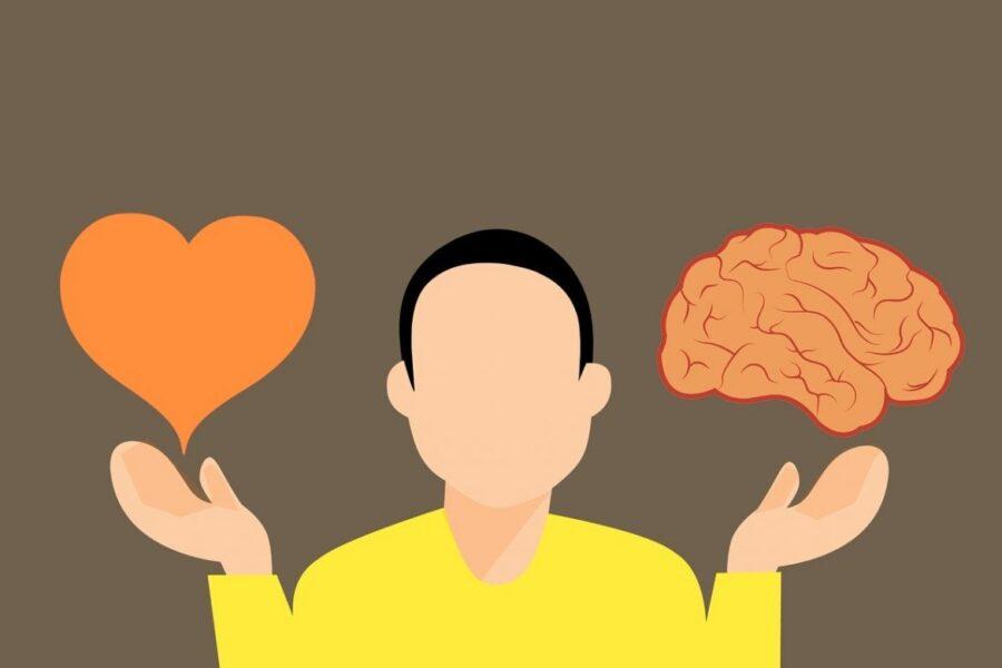 парень с сердцем и мозгами
