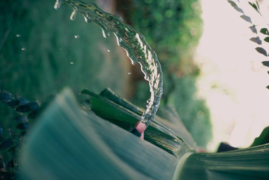 поток воды из цветка