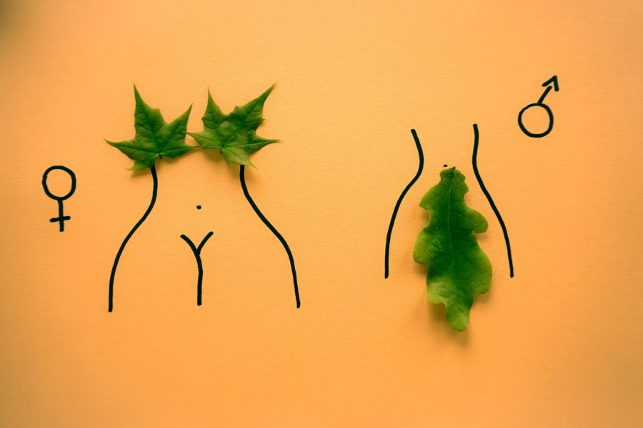 арт мужского и женского начала