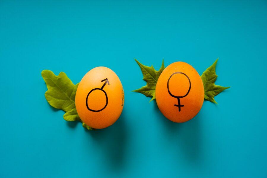 мужской и женский знаки на яйцах