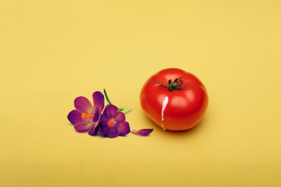капелька на помидоре