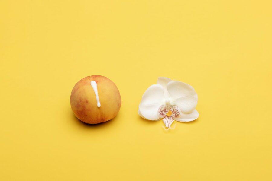персик с капелькой и цветочек